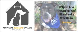 Support NFAWL's Riverhead Shelter Campaign